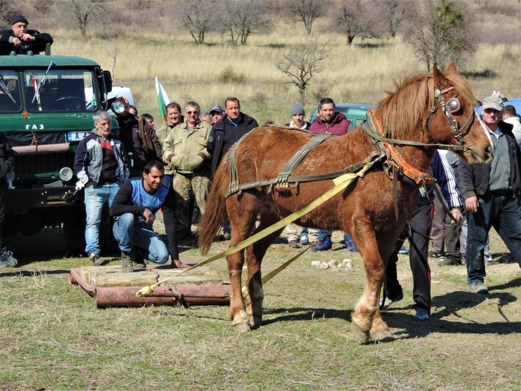 Зрелищни състезания организираха в Обзор на Тодоровден