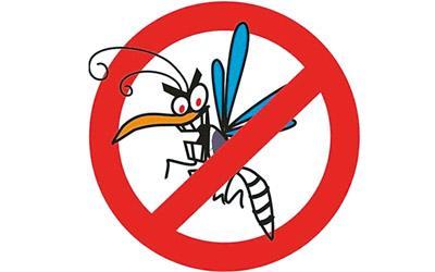Започват да пръскат против комари в Бургас