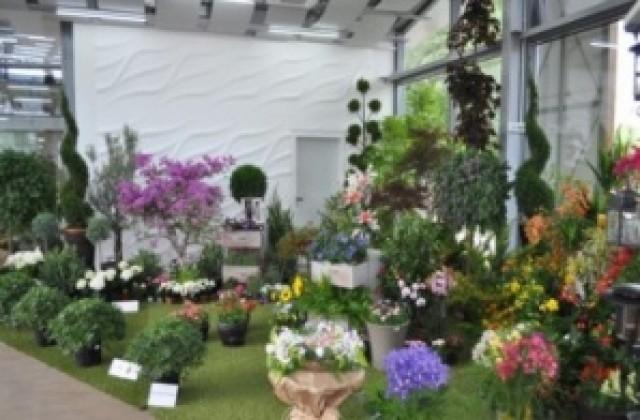 """Цветното  изложение """"Флора Бургас"""" започва през месец април"""