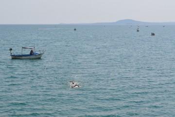 Наближава традиционният плувен маратон от остров Света Анастасия до Моста