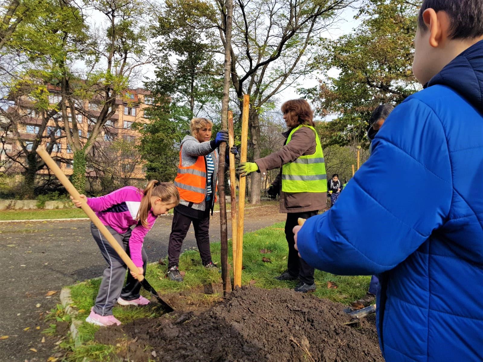 До края на април в Бургас ще бъдат засадени 287 млади дървета